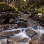 Nire Valley Stream